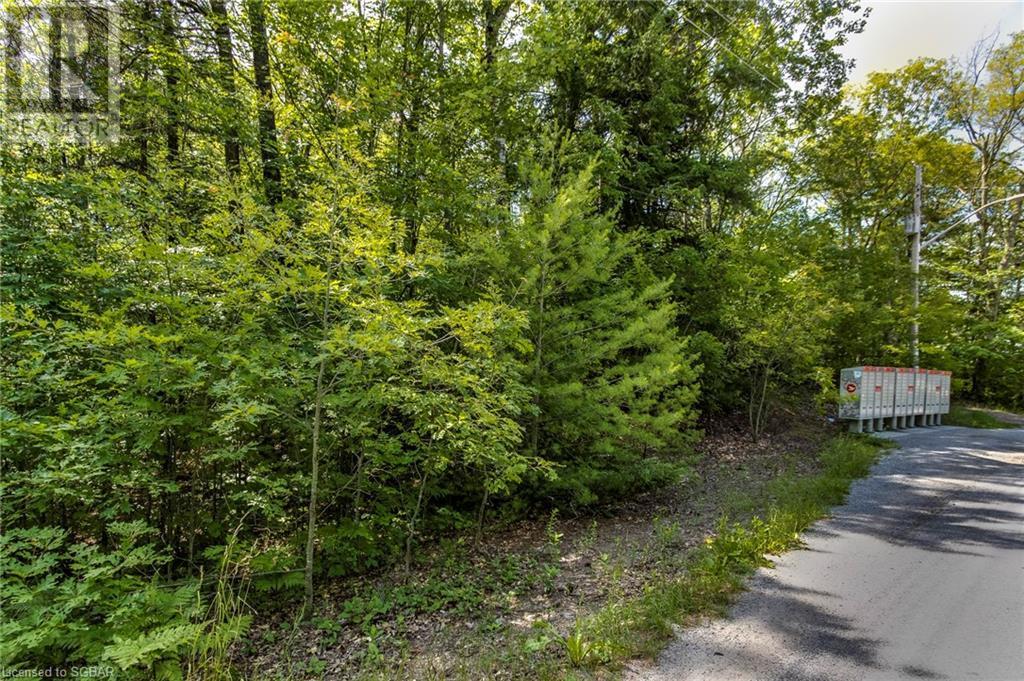 Lt 401 Desroches Trail, Tiny, Ontario  L9M 0H9 - Photo 2 - 40141690