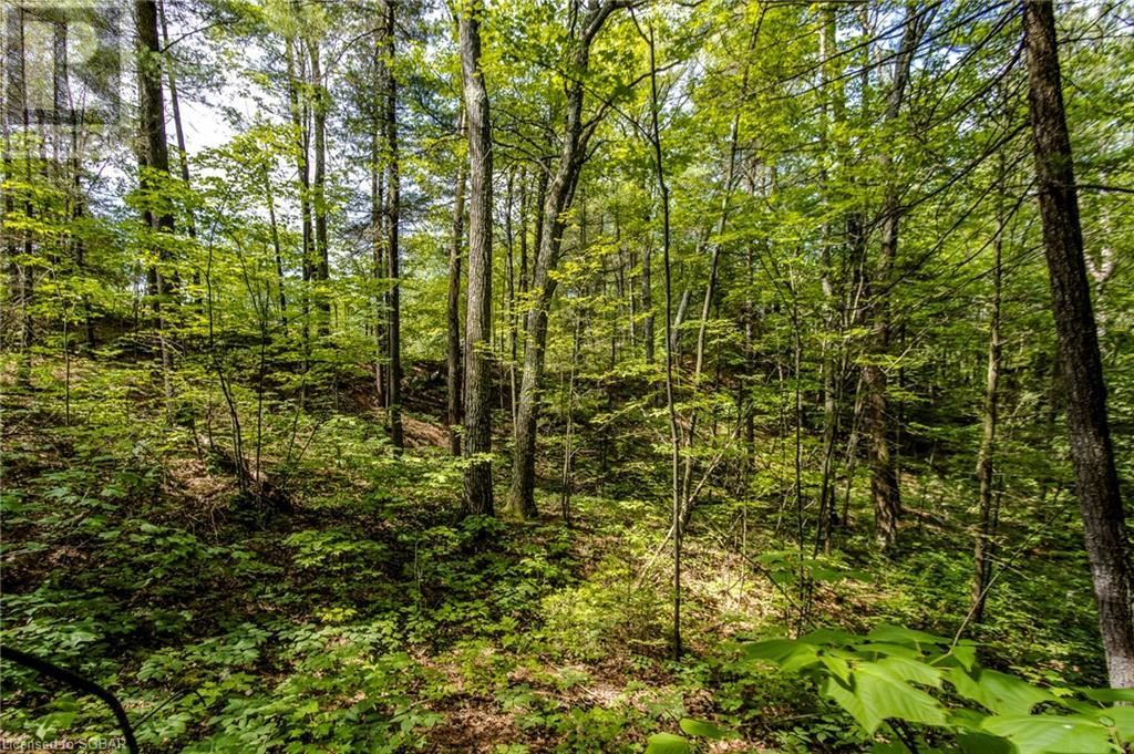 Lt 401 Desroches Trail, Tiny, Ontario  L9M 0H9 - Photo 4 - 40141690