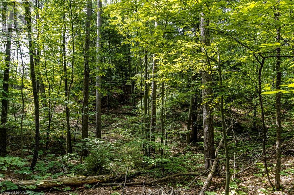 Lt 401 Desroches Trail, Tiny, Ontario  L9M 0H9 - Photo 8 - 40141690