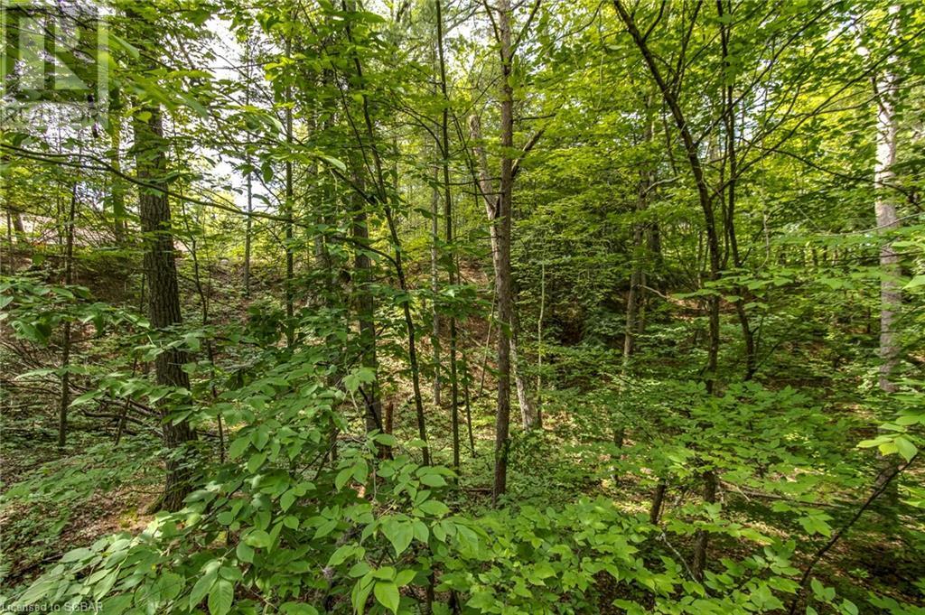 Lt 401 Desroches Trail, Tiny, Ontario  L9M 0H9 - Photo 9 - 40141690