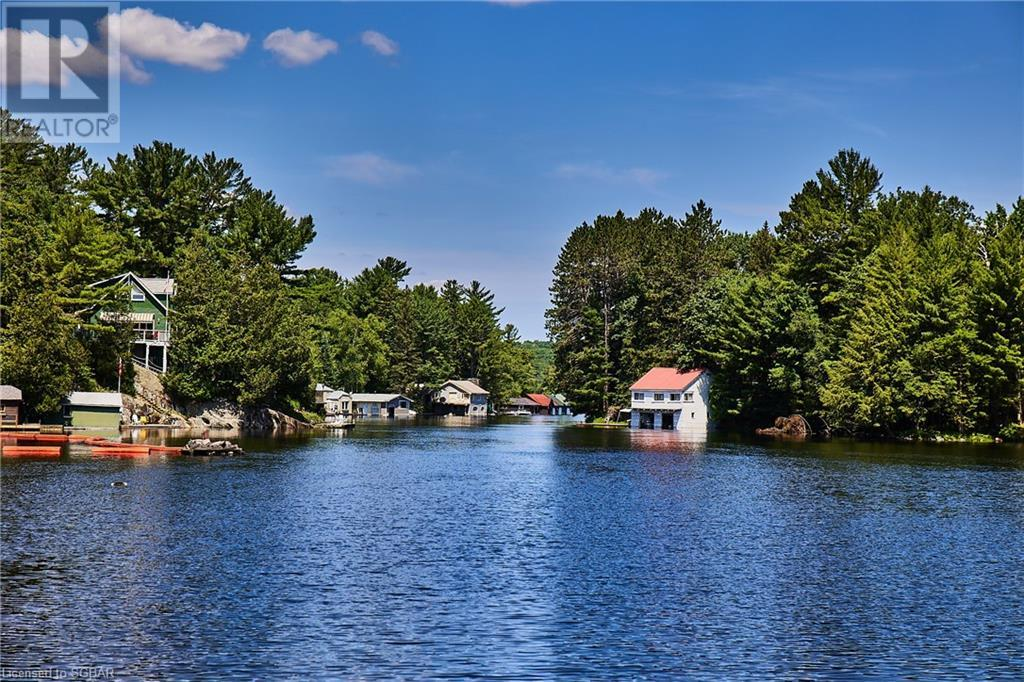 484 Muskoka Road, Port Sydney, Ontario  P0B 1L0 - Photo 44 - 40141189