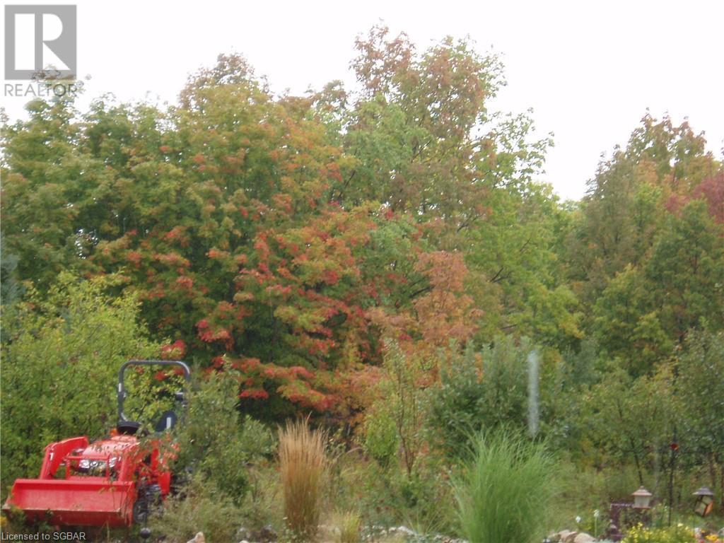 825215 40 Grey Road, Grey Highlands, Ontario  N0H 2S0 - Photo 28 - 40134114