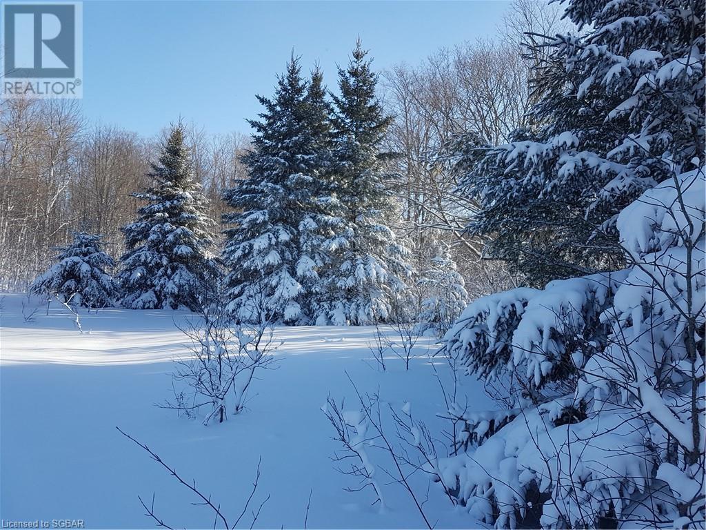 825215 40 Grey Road, Grey Highlands, Ontario  N0H 2S0 - Photo 22 - 40134114