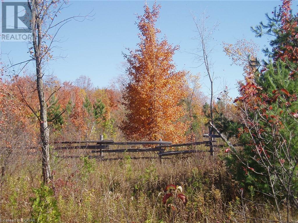 825215 40 Grey Road, Grey Highlands, Ontario  N0H 2S0 - Photo 30 - 40134114