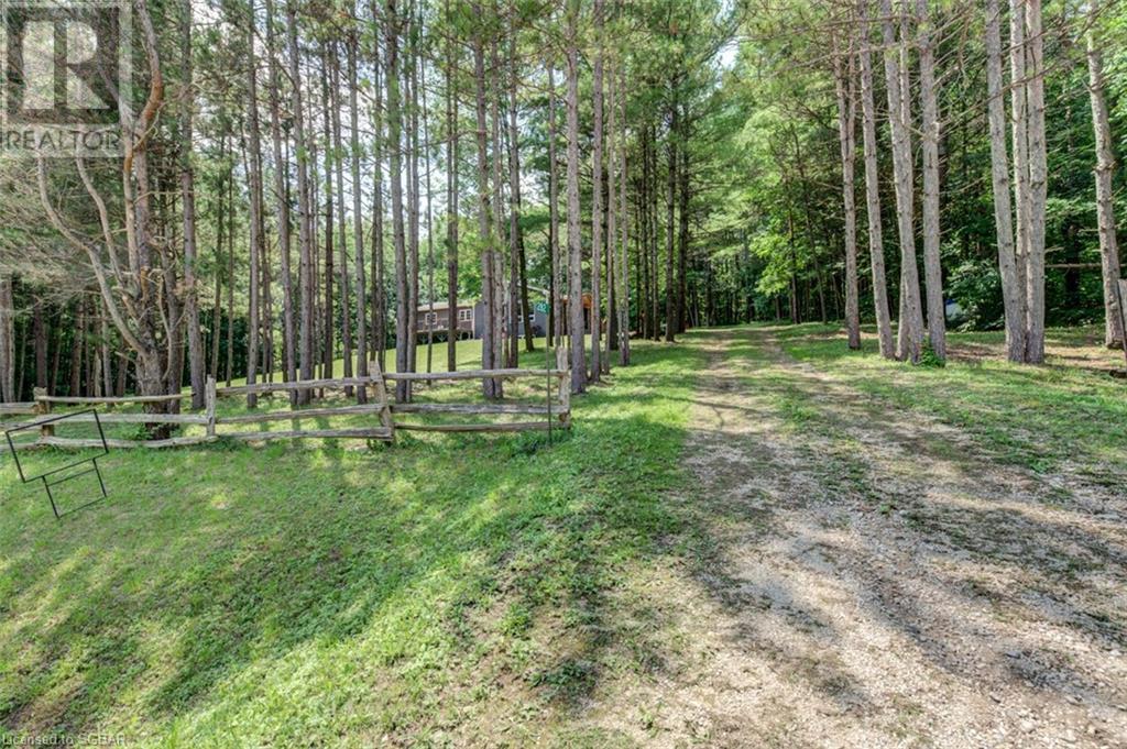 282 Bowles Bluff Road, Grey Highlands, Ontario  N0C 1H0 - Photo 2 - 40141841