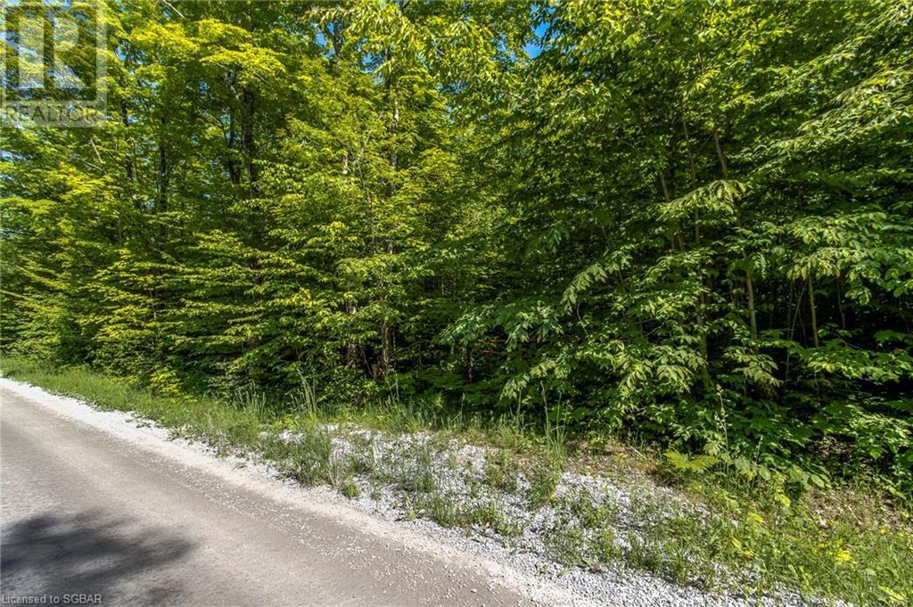 Lt 23 17 Concession W, Tiny, Ontario  L9M 0K6 - Photo 20 - 40125905