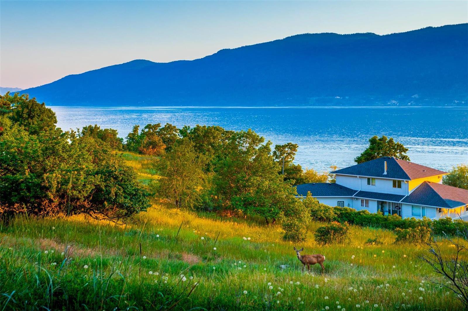 12815 Pixton Road, Sw, Lake Country, British Columbia  V4V 1C9 - Photo 25 - 10236311