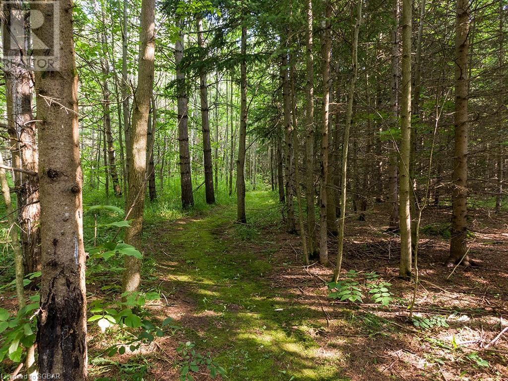 596224 4th Line, The Blue Mountains, Ontario  N0H 1J0 - Photo 23 - 40143204