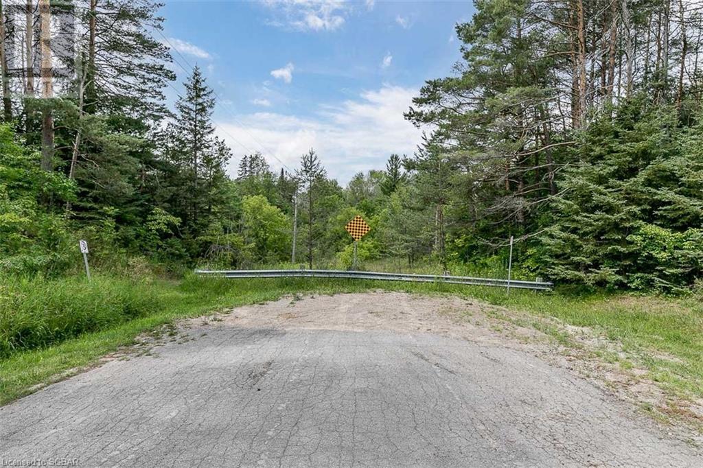 Lt 17 Pine Plains Road, Everett, Ontario  L0M 1J0 - Photo 11 - 40143056