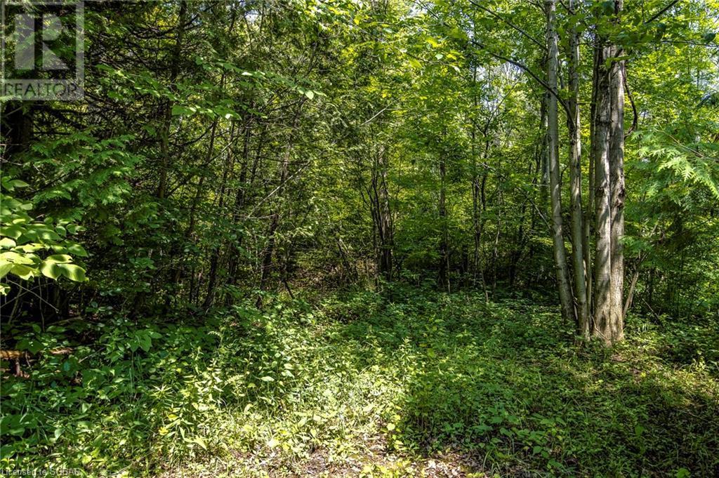 2644 Triple Bay Road, Tay, Ontario  L0K 1R0 - Photo 12 - 40143169
