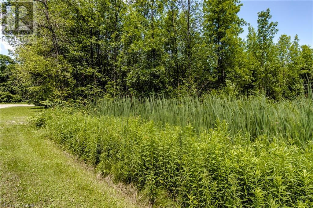 2644 Triple Bay Road, Tay, Ontario  L0K 1R0 - Photo 5 - 40143169