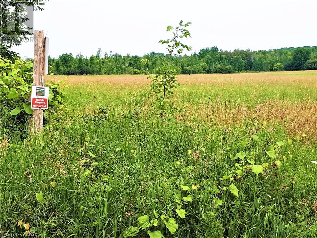 Lt 22 22 Sideroad, Meaford (Municipality), Ontario  N4K 5W4 - Photo 6 - 40134575