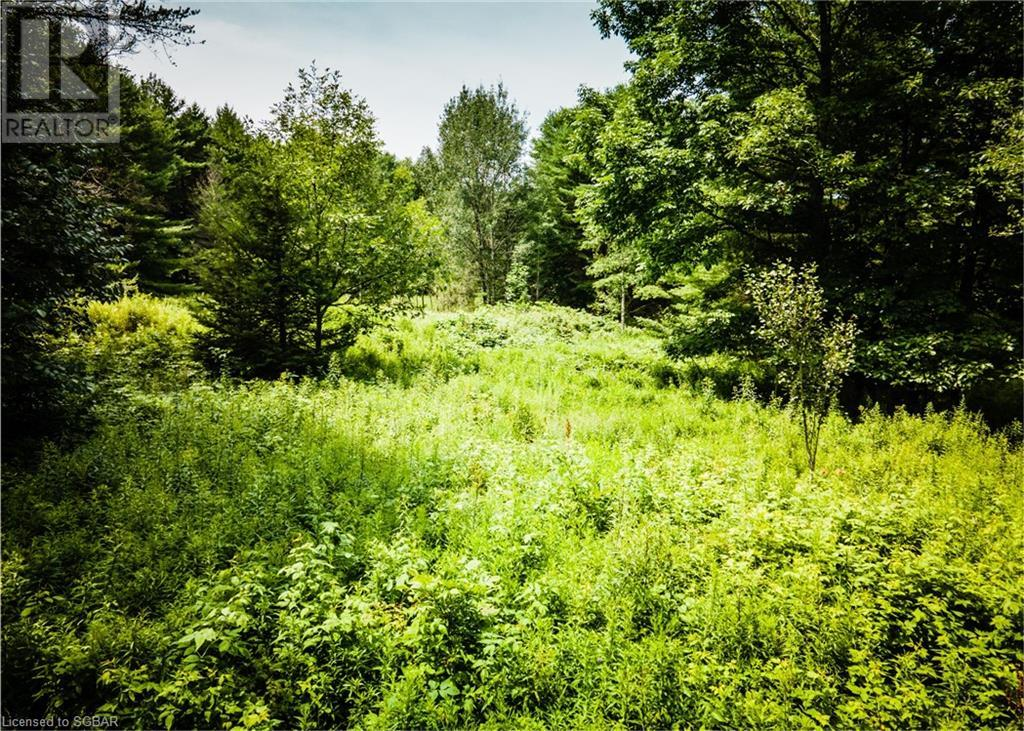 1067 Cedar Rail Drive, Port Carling, Ontario  P0B 1G0 - Photo 2 - 40137418