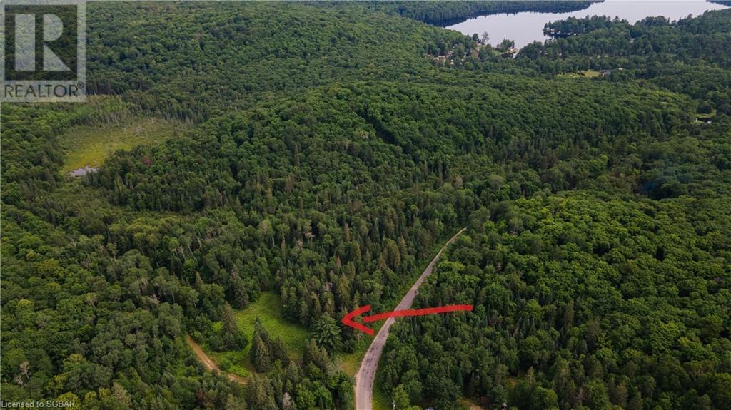 Lt 24 Deer Lake Road Unit# N Pt 1,2,3, Emsdale, Ontario  P1H 1R1 - Photo 2 - 40143392