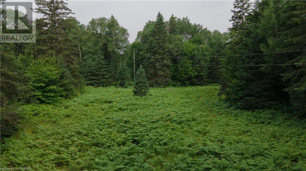 Lt 24 Deer Lake Road Unit# N Pt 1,2,3, Emsdale, Ontario  P1H 1R1 - Photo 4 - 40143392