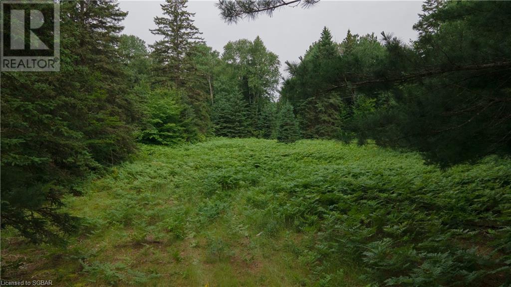 Lt 24 Deer Lake Road Unit# N Pt 1,2,3, Emsdale, Ontario  P1H 1R1 - Photo 5 - 40143392