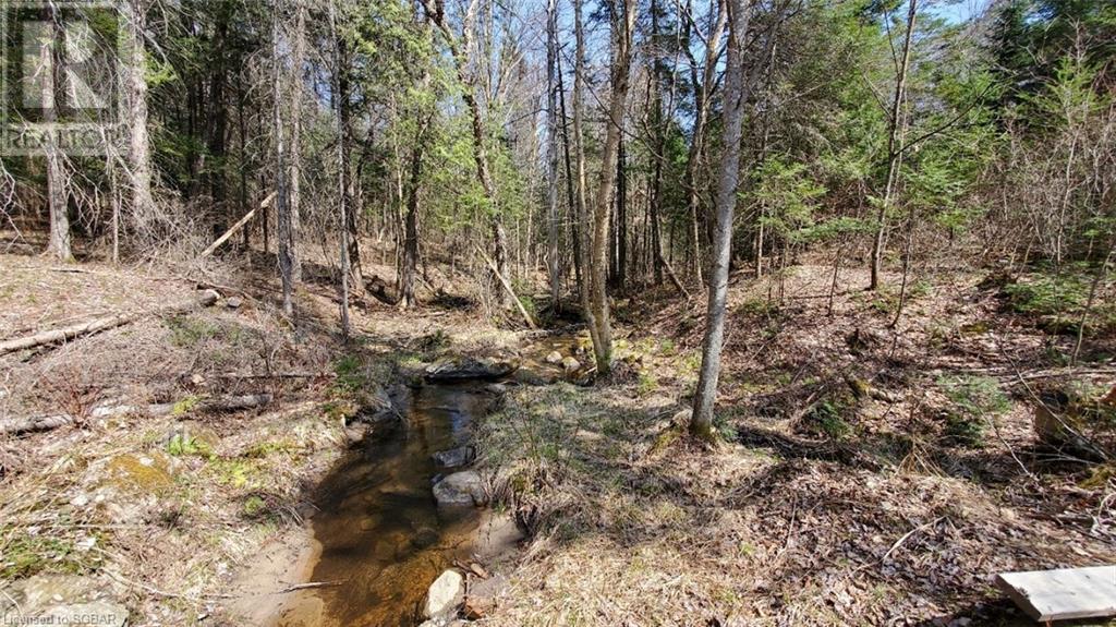 Lt 24 Deer Lake Road, Emsdale, Ontario  P1H 1R1 - Photo 10 - 40145352