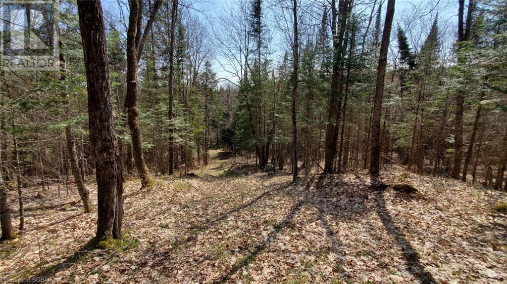 Lt 24 Deer Lake Road, Emsdale, Ontario  P1H 1R1 - Photo 2 - 40145352
