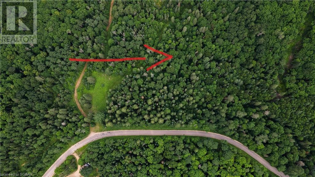 Lt 24 Deer Lake Road, Emsdale, Ontario  P1H 1R1 - Photo 4 - 40145352