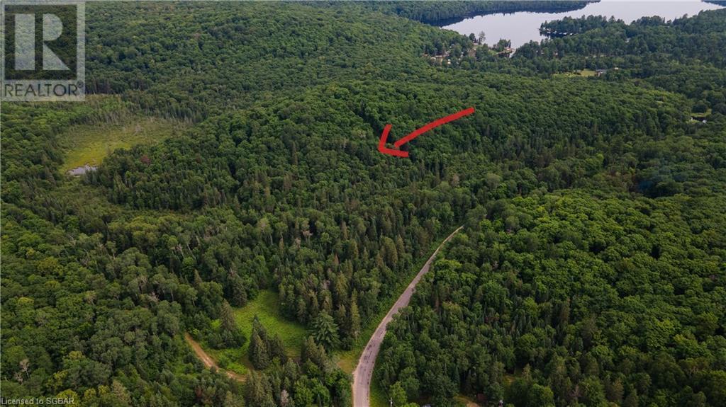 Lt 24 Deer Lake Road, Emsdale, Ontario  P1H 1R1 - Photo 7 - 40145352