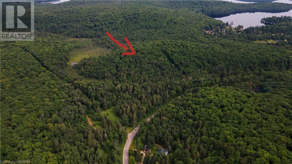 Lt 24 Deer Lake Road, Emsdale, Ontario  P1H 1R1 - Photo 8 - 40145352