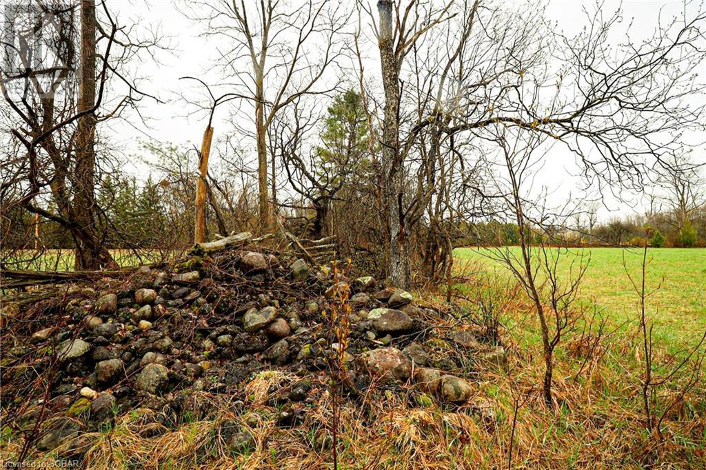 394220 2 Concession, West Grey, Ontario  N0G 1R0 - Photo 6 - 40098919