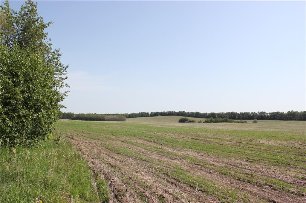 1262 Township 391, Sylvan Lake, Alberta  T4S 0A7 - Photo 18 - C4192272
