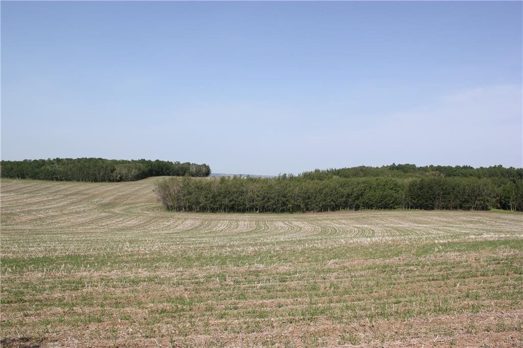 1262 Township 391, Sylvan Lake, Alberta  T4S 0A7 - Photo 12 - C4192272