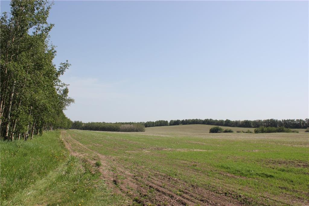 1262 Township 391, Sylvan Lake, Alberta  T4S 0A7 - Photo 10 - C4192272