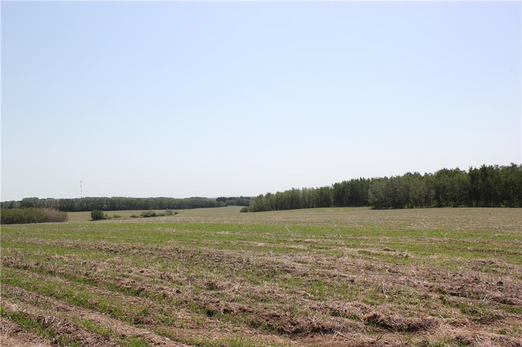 1262 Township 391, Sylvan Lake, Alberta  T4S 0A7 - Photo 29 - C4192272