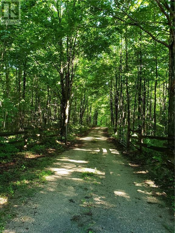 825215 40 Grey Road, Grey Highlands, Ontario  N0H 2S0 - Photo 39 - 40134114