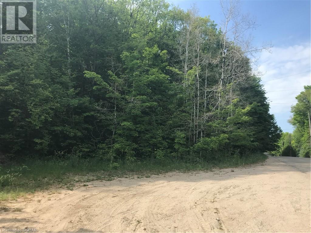 Lt A Champlain Road, Tiny, Ontario  L9M 0C1 - Photo 4 - 40127219
