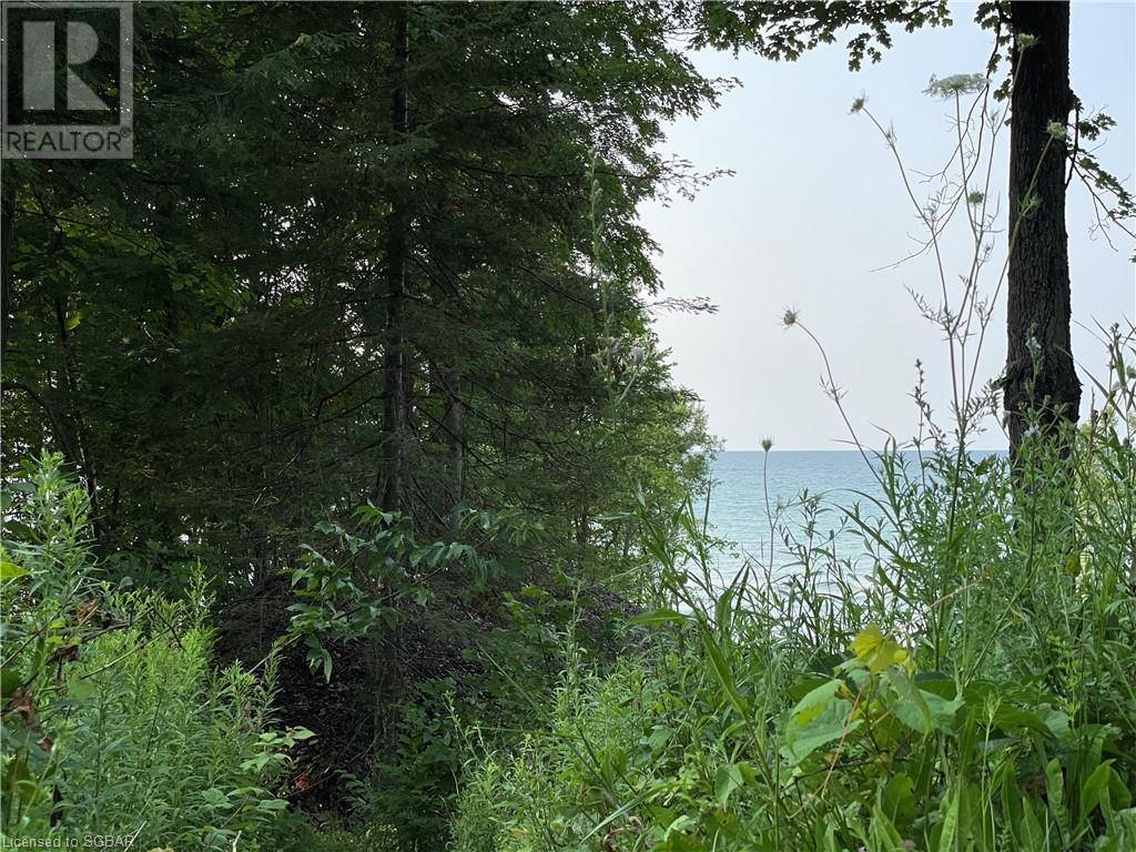 Lt 11 & 12 A Concession, Meaford (Municipality), Ontario  N0H 1B0 - Photo 3 - 40144861