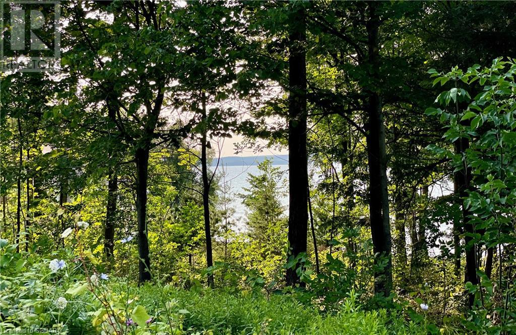 Lt 11 & 12 A Concession, Meaford (Municipality), Ontario  N0H 1B0 - Photo 2 - 40144861