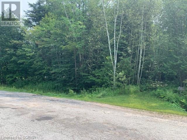 Lt 573 Champlain Road, Tiny, Ontario  L9M 0C9 - Photo 6 - 40143802