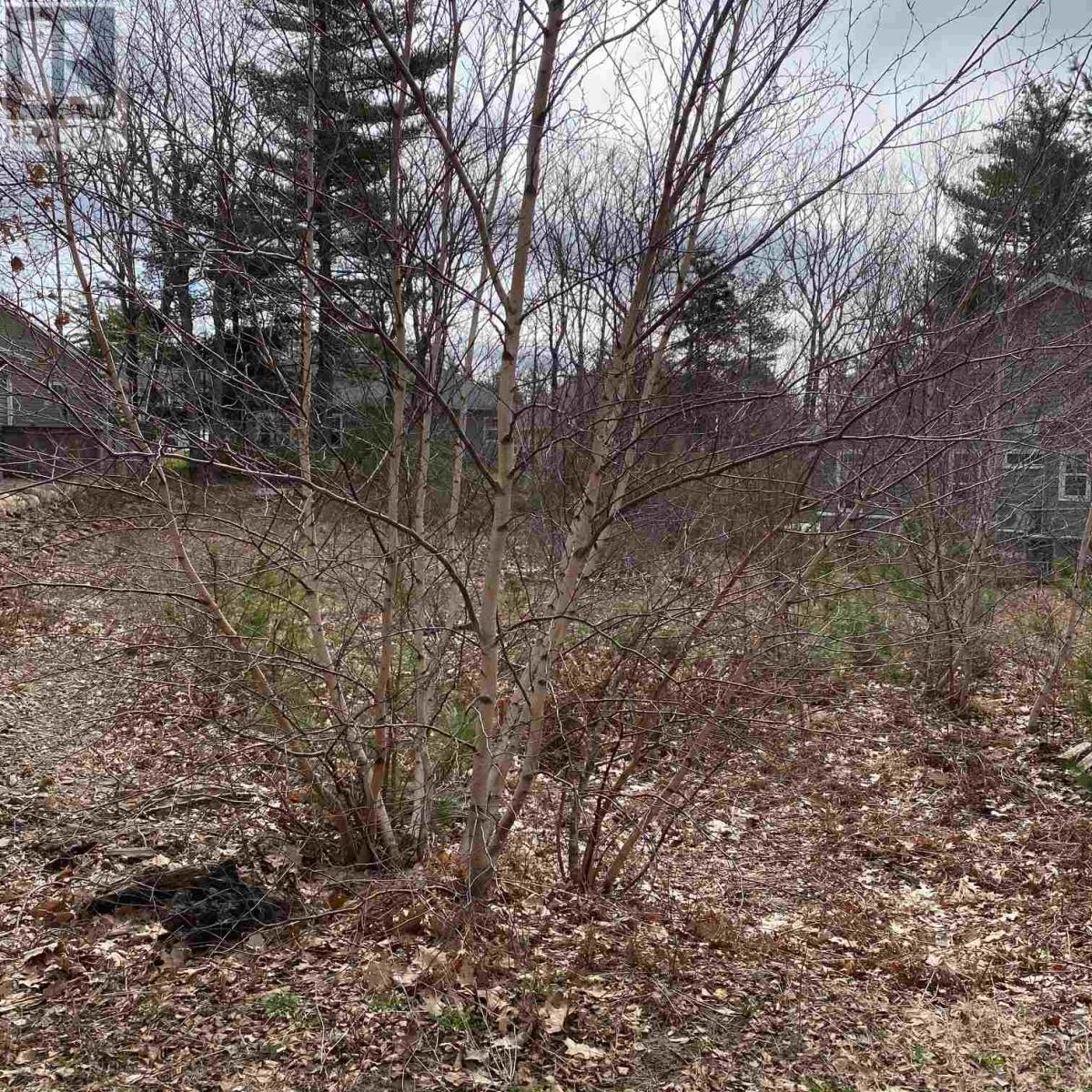 Lot 21 Acorn Drive, Bridgewater, Nova Scotia  B4V 8Z1 - Photo 2 - 201711031