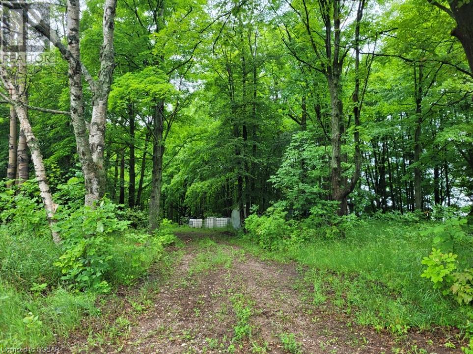 16956 27 County Road, Waverley, Ontario  L0L 1P0 - Photo 15 - 40071468