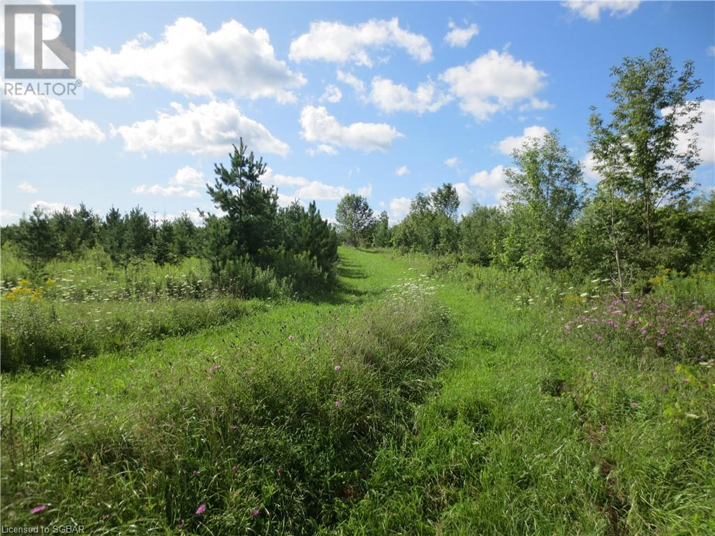 179 Slabtown Road, The Blue Mountains, Ontario  N0H 1J0 - Photo 13 - 40144833