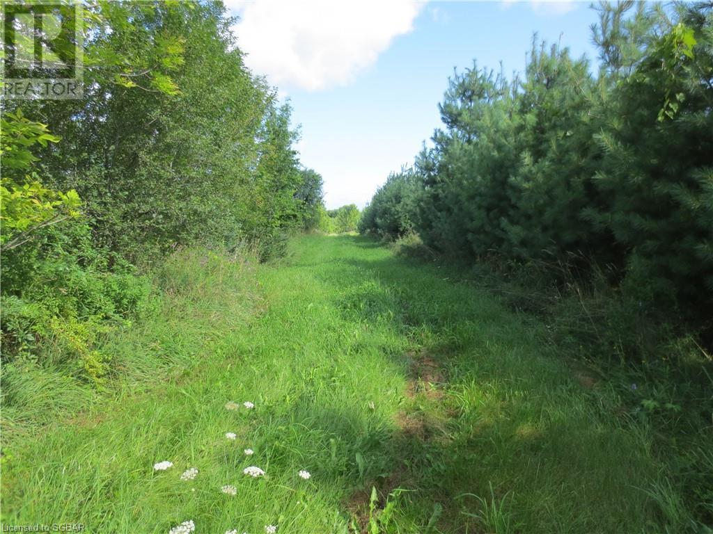 179 Slabtown Road, The Blue Mountains, Ontario  N0H 1J0 - Photo 11 - 40144833