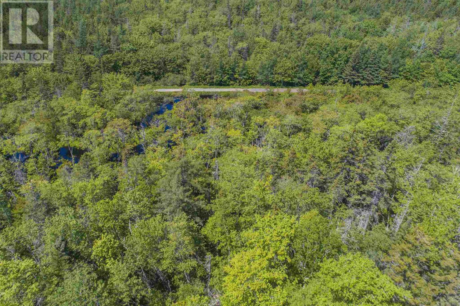 Lot Norwood Road, Maxwellton, Nova Scotia  B0W 2L0 - Photo 12 - 202015161