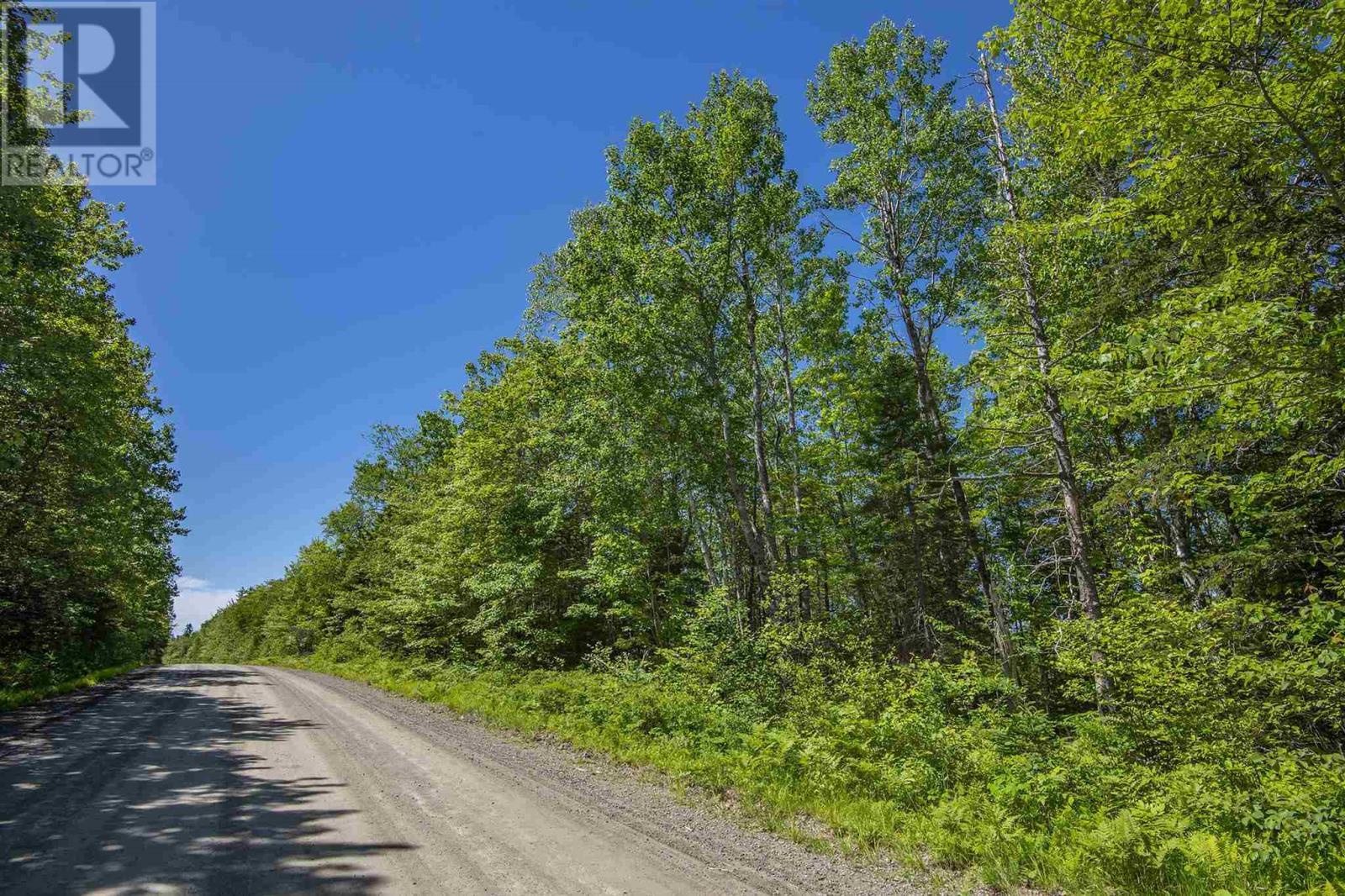 Lot Norwood Road, Maxwellton, Nova Scotia  B0W 2L0 - Photo 4 - 202015161