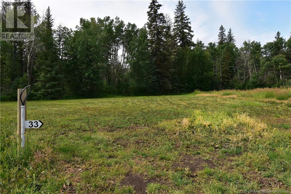 Property Image 3 for #33 - 45027 802 Township