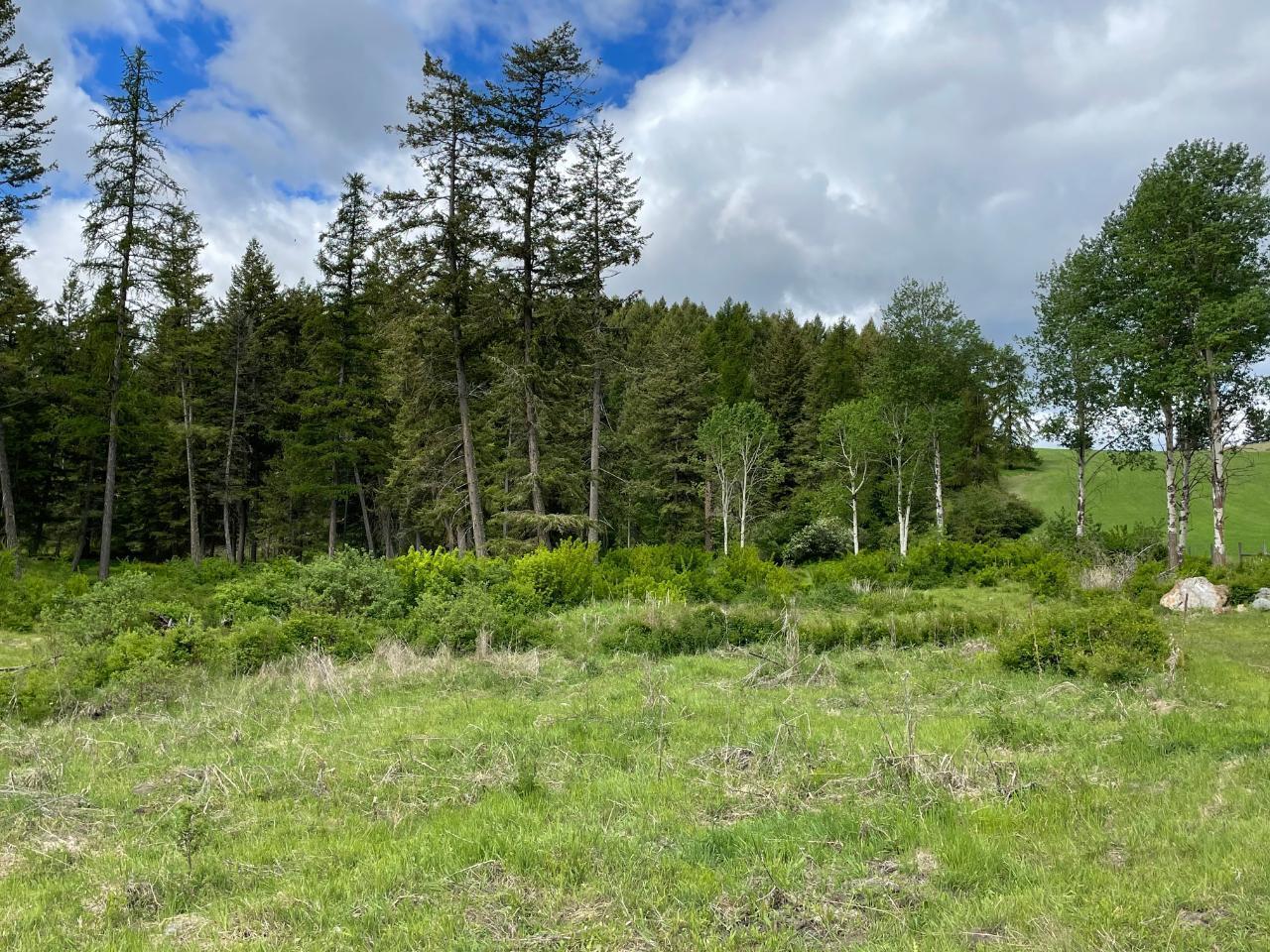 4685 Hwy 3,, Rock Creek/bridesville, British Columbia  V0H 1Y0 - Photo 56 - 189734