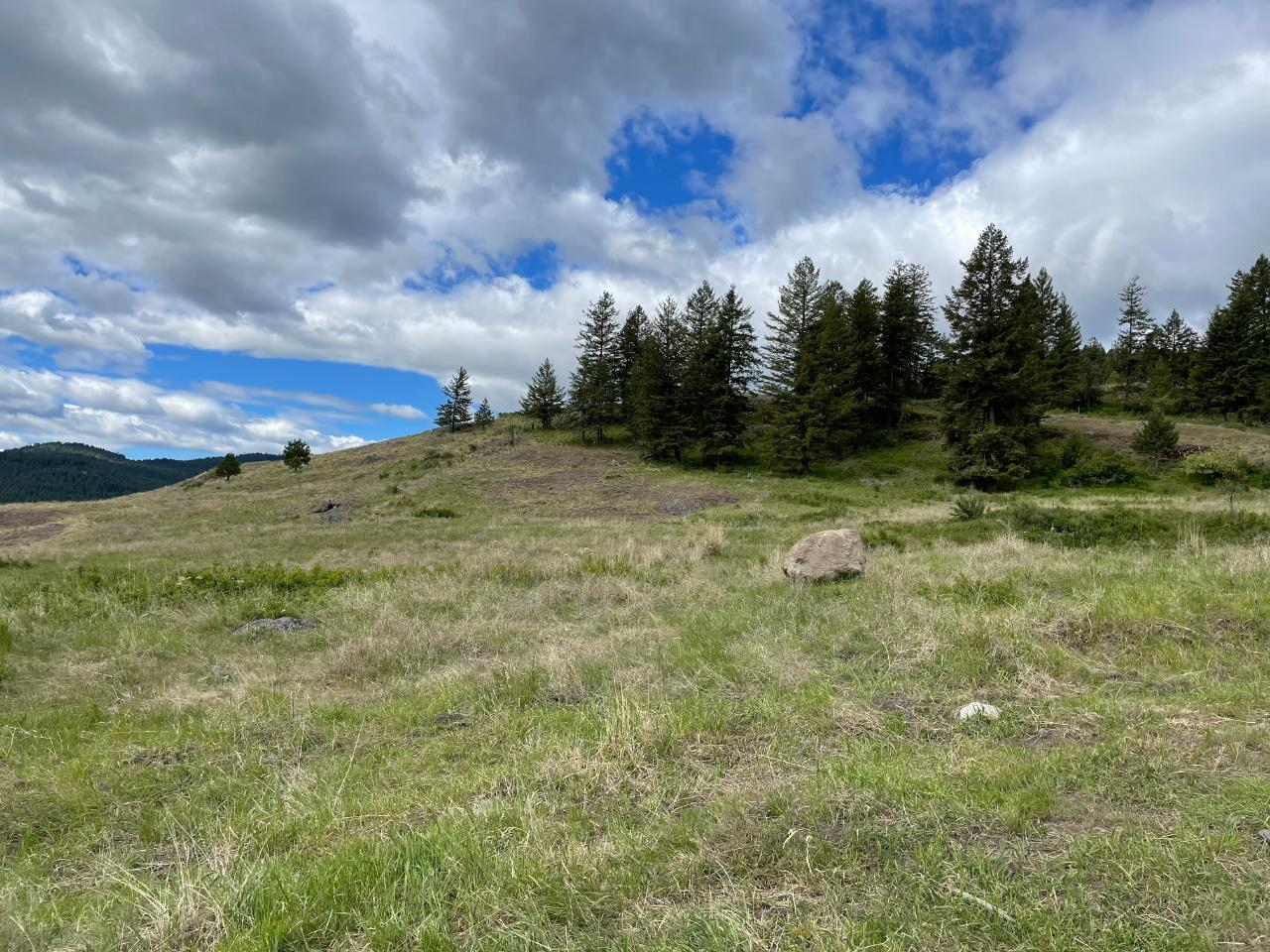 4685 Hwy 3,, Rock Creek/bridesville, British Columbia  V0H 1Y0 - Photo 57 - 189734