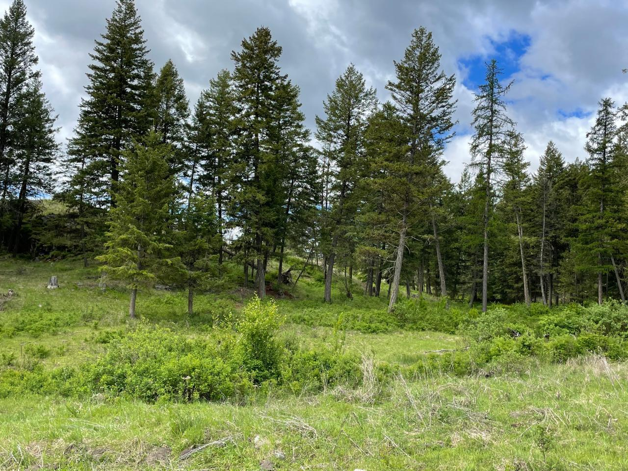 4685 Hwy 3,, Rock Creek/bridesville, British Columbia  V0H 1Y0 - Photo 54 - 189733