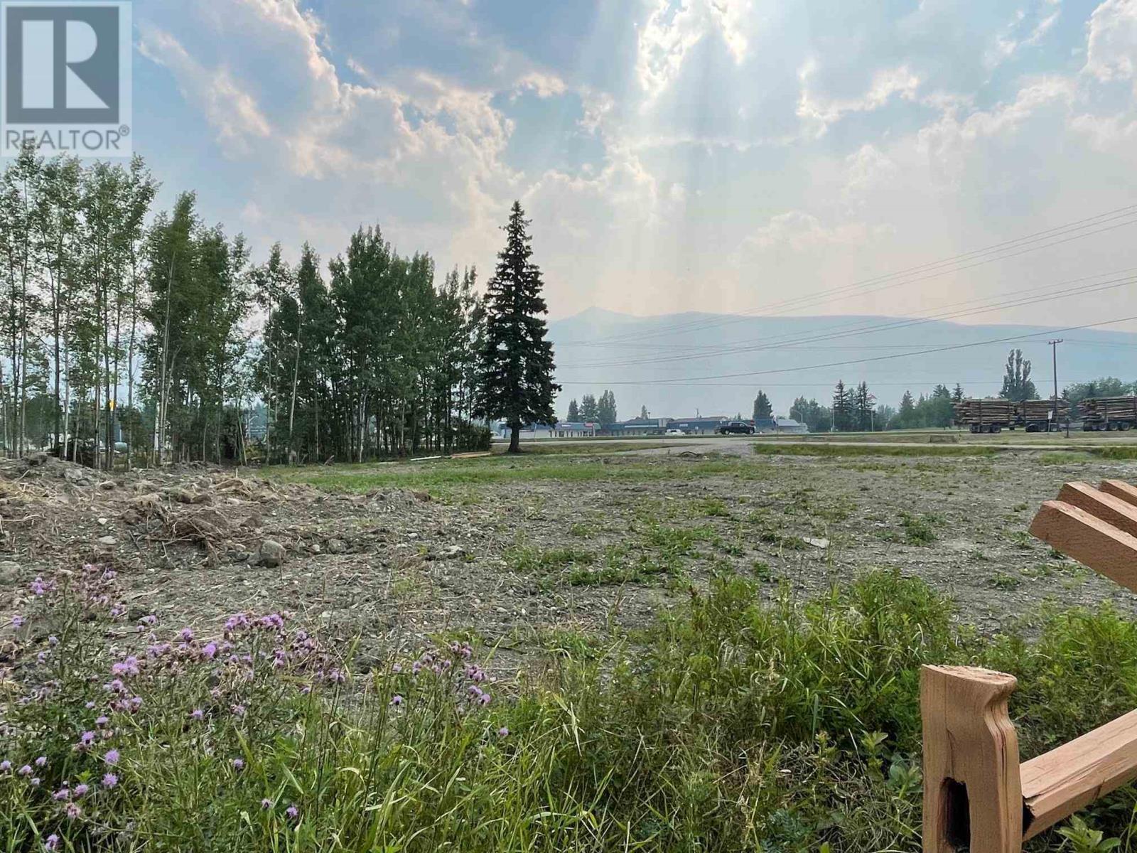 790 Airport Road, Robson Valley (Zone 81), British Columbia  V0J 2E0 - Photo 5 - C8039698