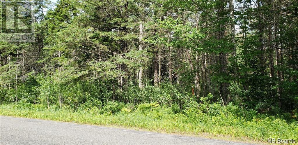 Lot 16-4 Lower Durham Road, Durham Bridge, New Brunswick  E6C 1H5 - Photo 1 - NB062126