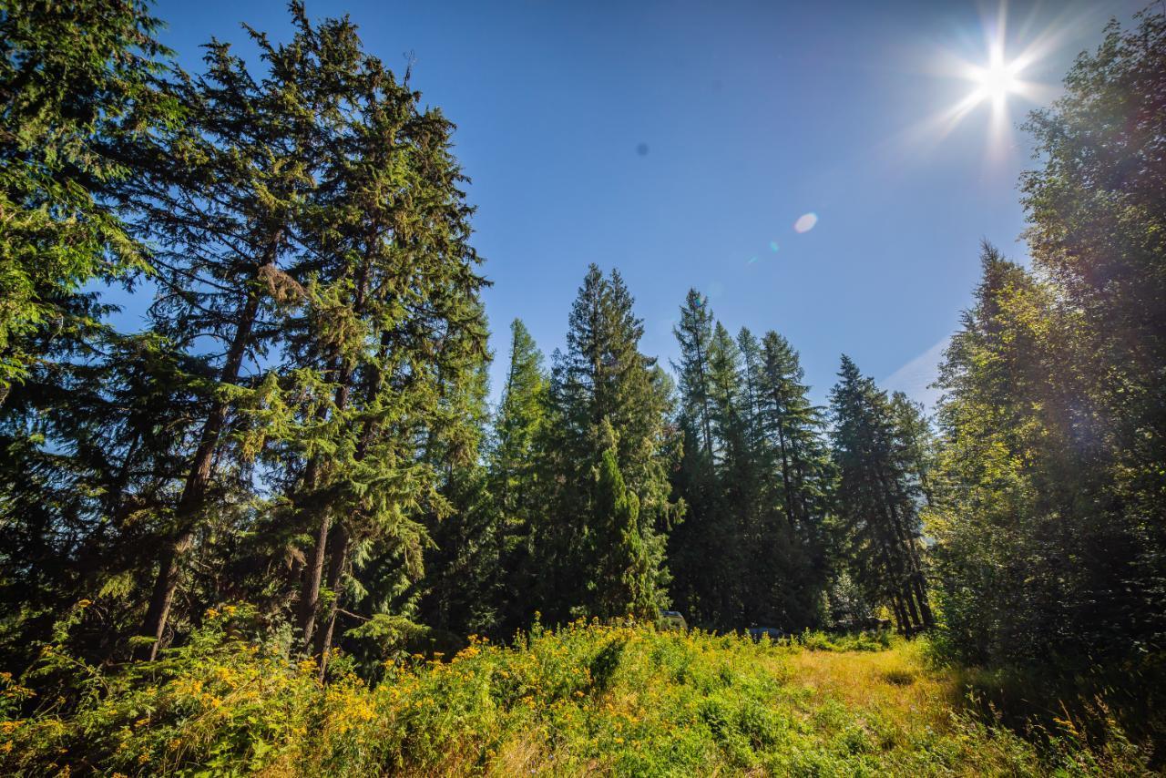 2402 Silver King Road, Nelson, British Columbia  V1L 1C9 - Photo 28 - 2454204