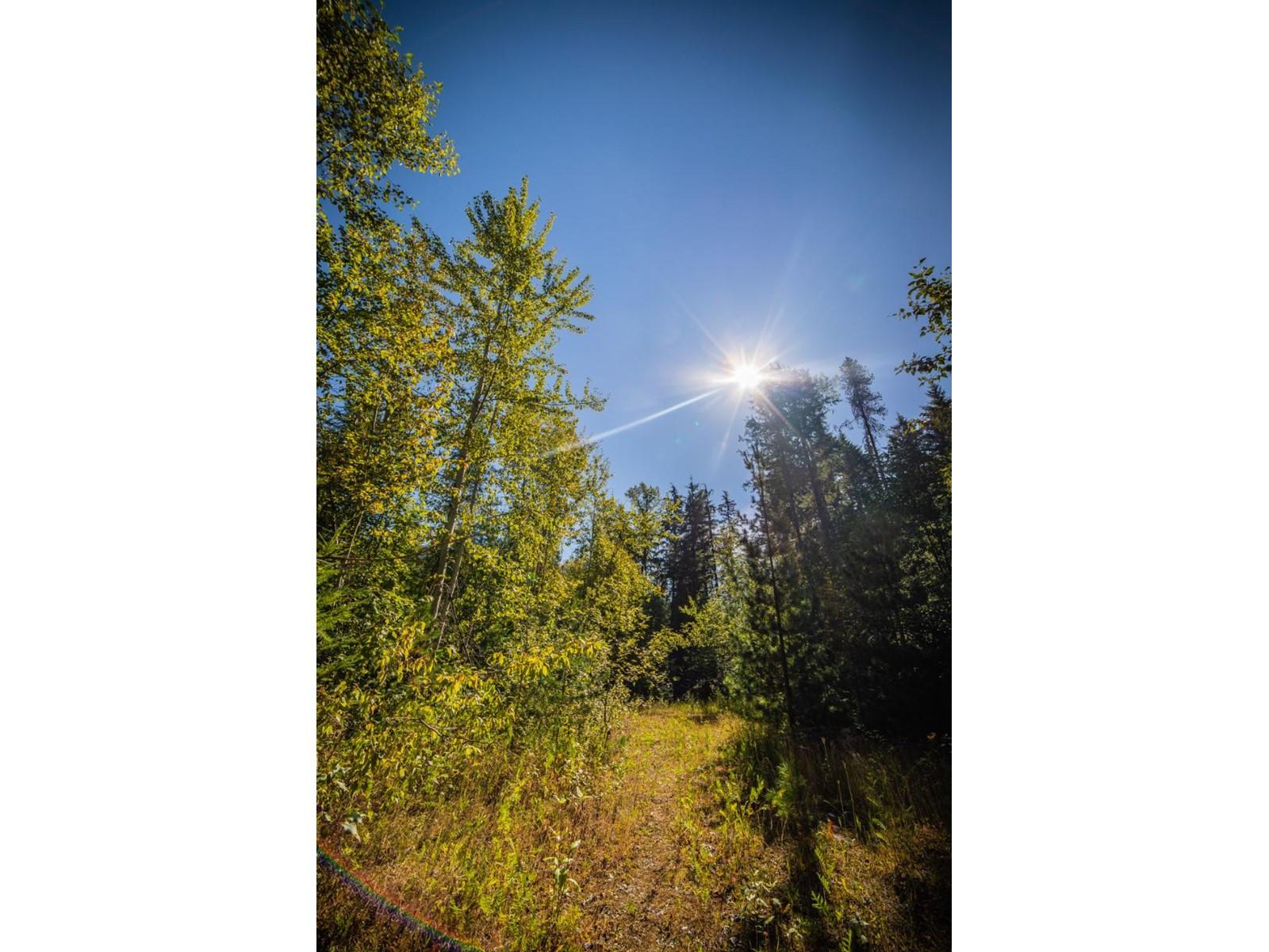 2402 Silver King Road, Nelson, British Columbia  V1L 1C9 - Photo 31 - 2454204