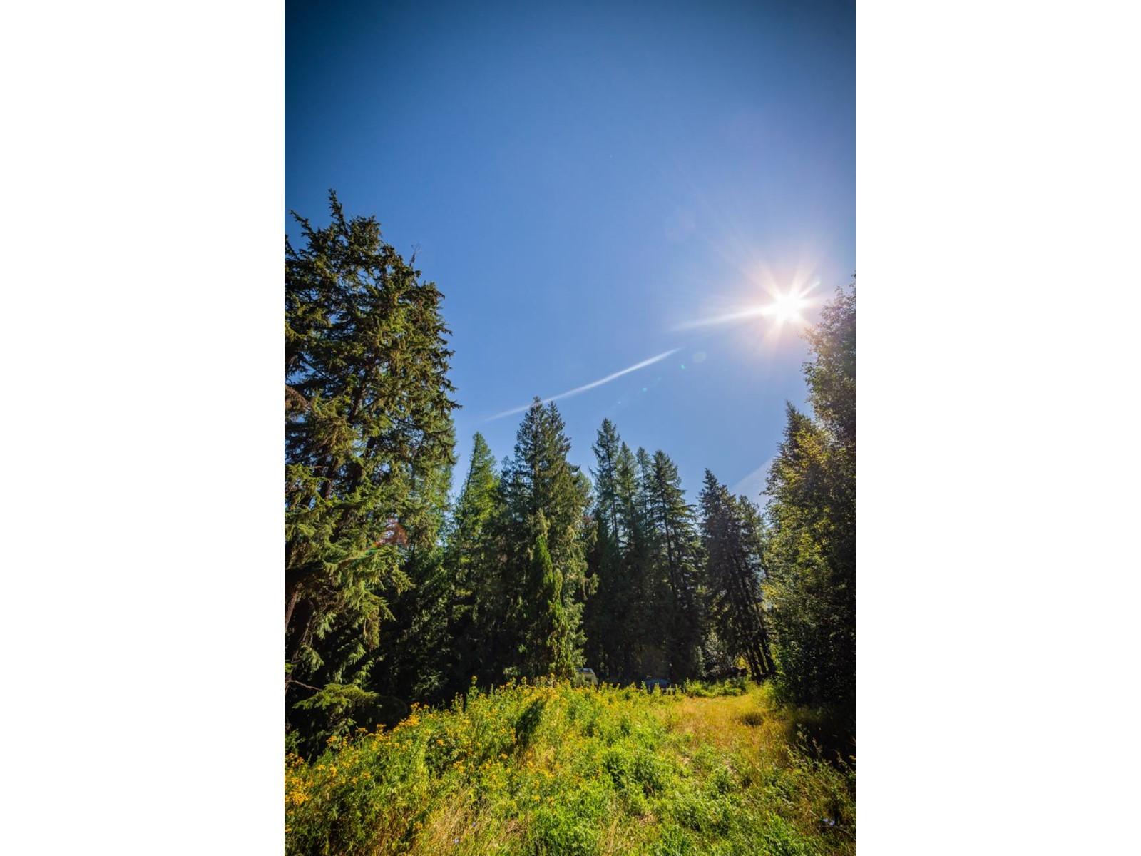 2402 Silver King Road, Nelson, British Columbia  V1L 1C9 - Photo 27 - 2454204